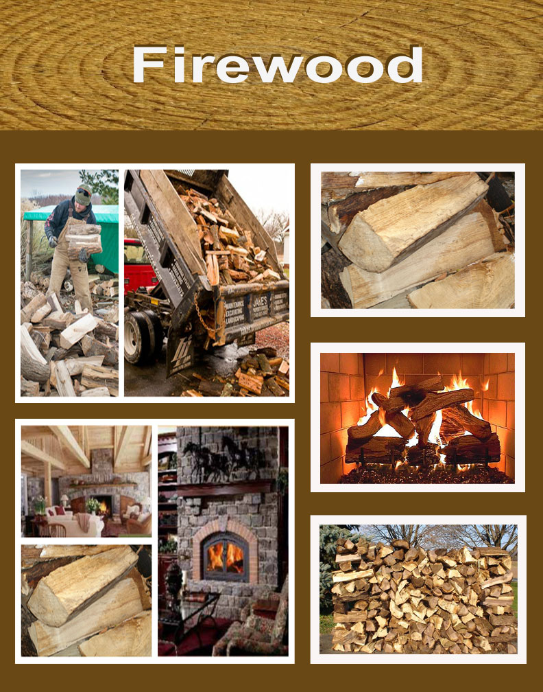 firewood - Jake's Property Services delivers the best seasoned dry firewood in Ohio!