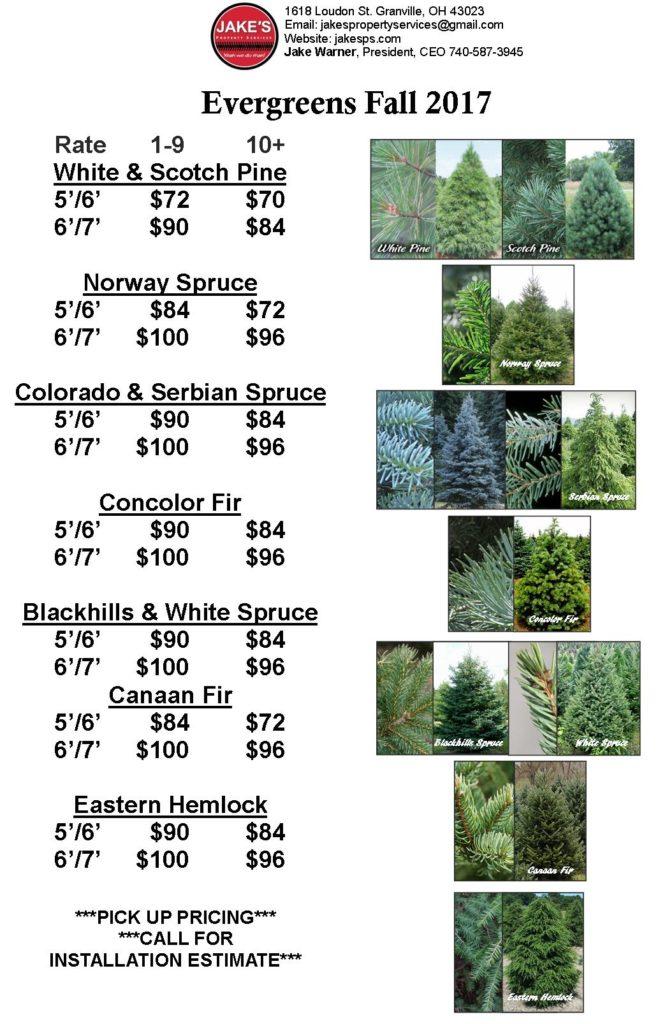 Tree Price Sheet