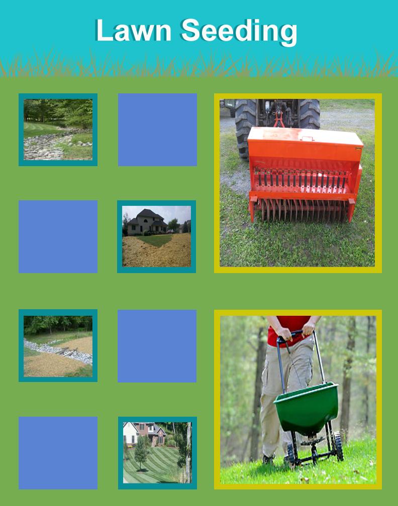 Lawn Seeding Ohio