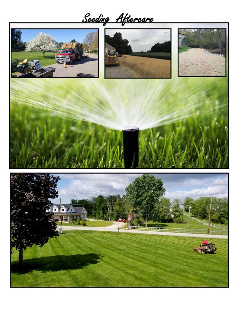 Sod Lawn Services Ohio Lawn Care Services Central Ohio